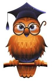 elem owls